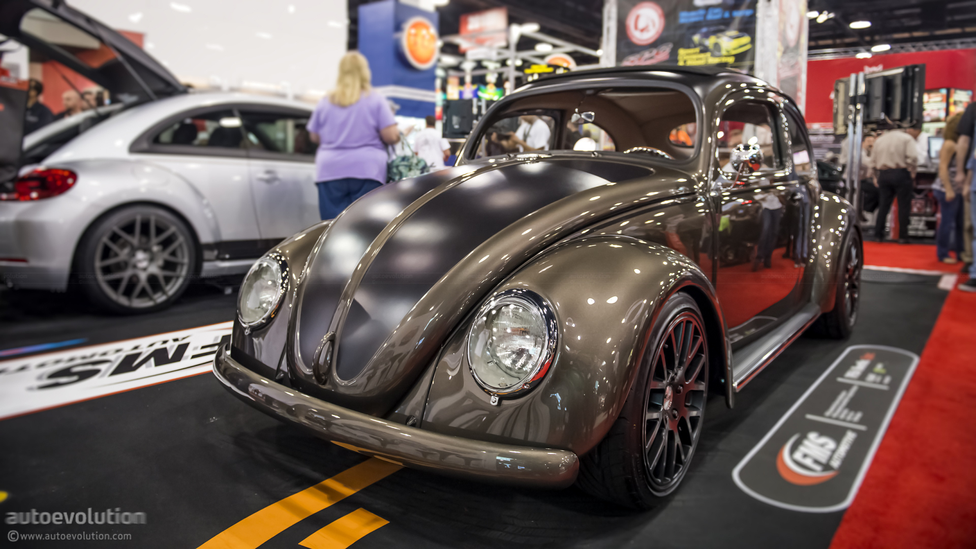 Volkswagen Beetle Touch Up Paint