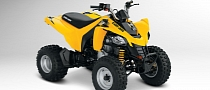 2013 Can-Am DS 250, an Entry-Level Sport ATV
