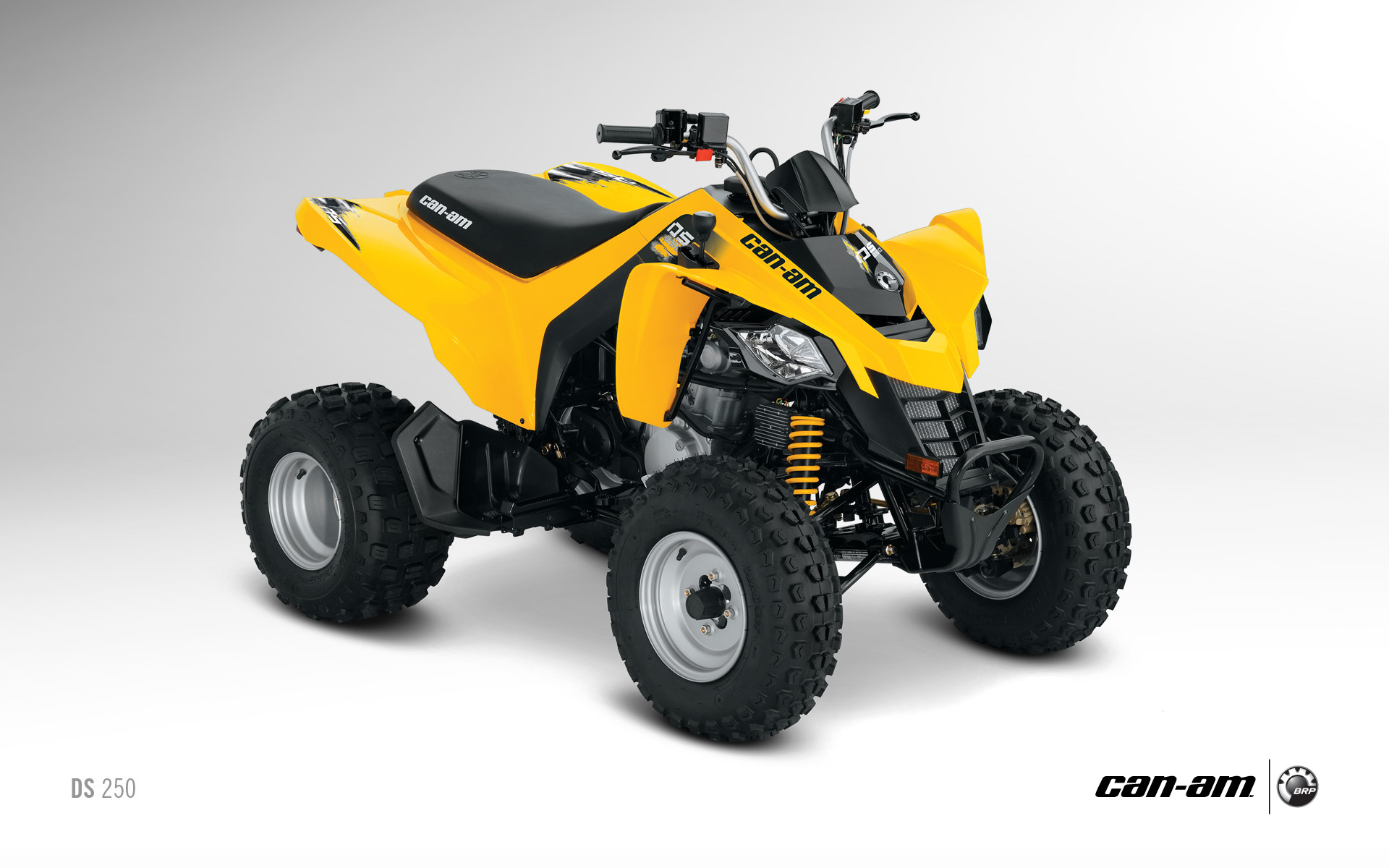 2013 Can-Am DS 250, an Entry-Level Sport ATV - autoevolution