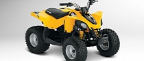 2013 Can-Am DS 90, Your Kid's Favorite Toy