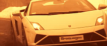 2013 Gallardo Plays in the Mud and Snow: Beef and Horses [Video]