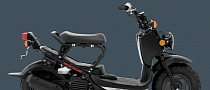 2013 Honda Ruckus, When Fun Meets Function