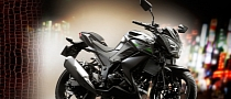2014 Kawasaki Z250 Looks Mean, But It's No R25 [Photo Gallery]