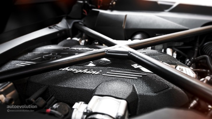 2014 Lamborghini Aventador Roadster V12 Heart Exposed