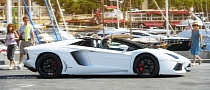 2014 Lamborghini Aventador Roadster Steals Hearts