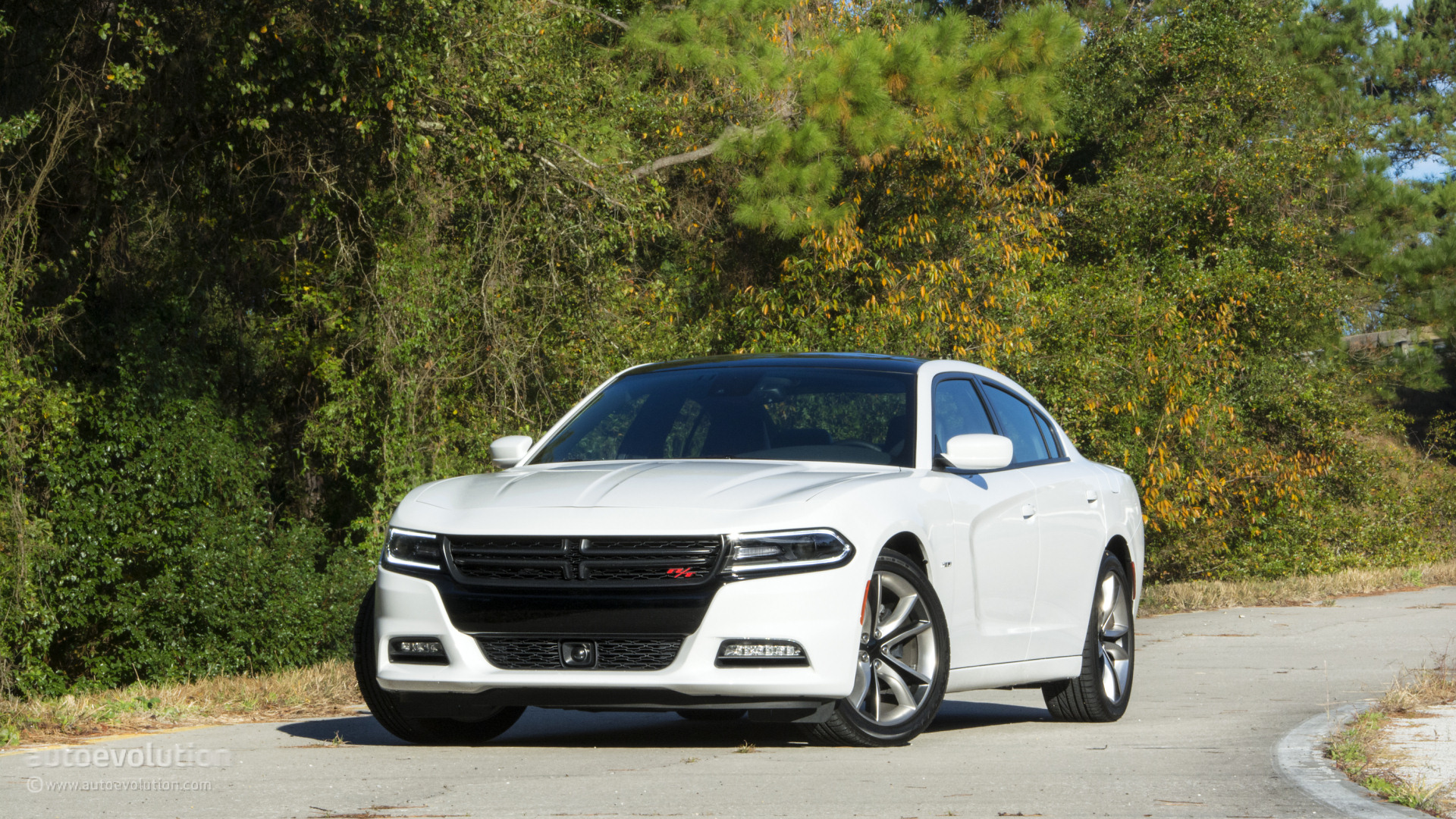 2015 Dodge Charger R T Wallpapers Right In The Middle