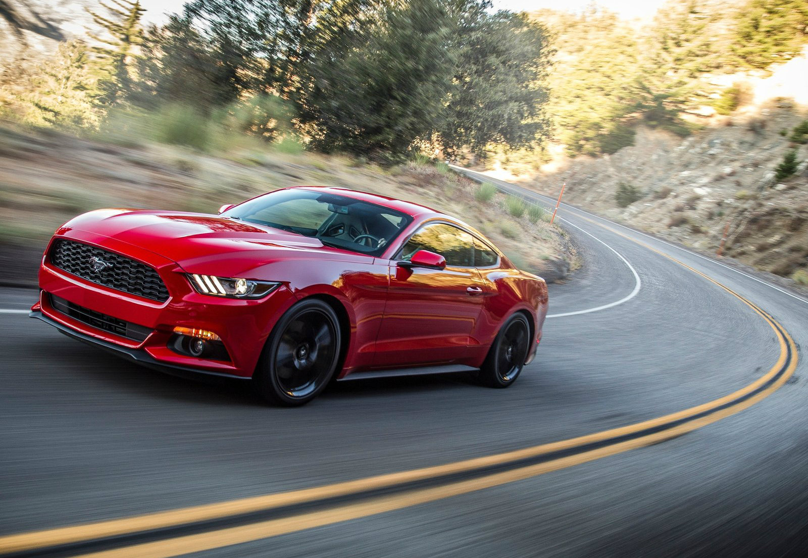 11 photos 2015 ford mustang ecoboost