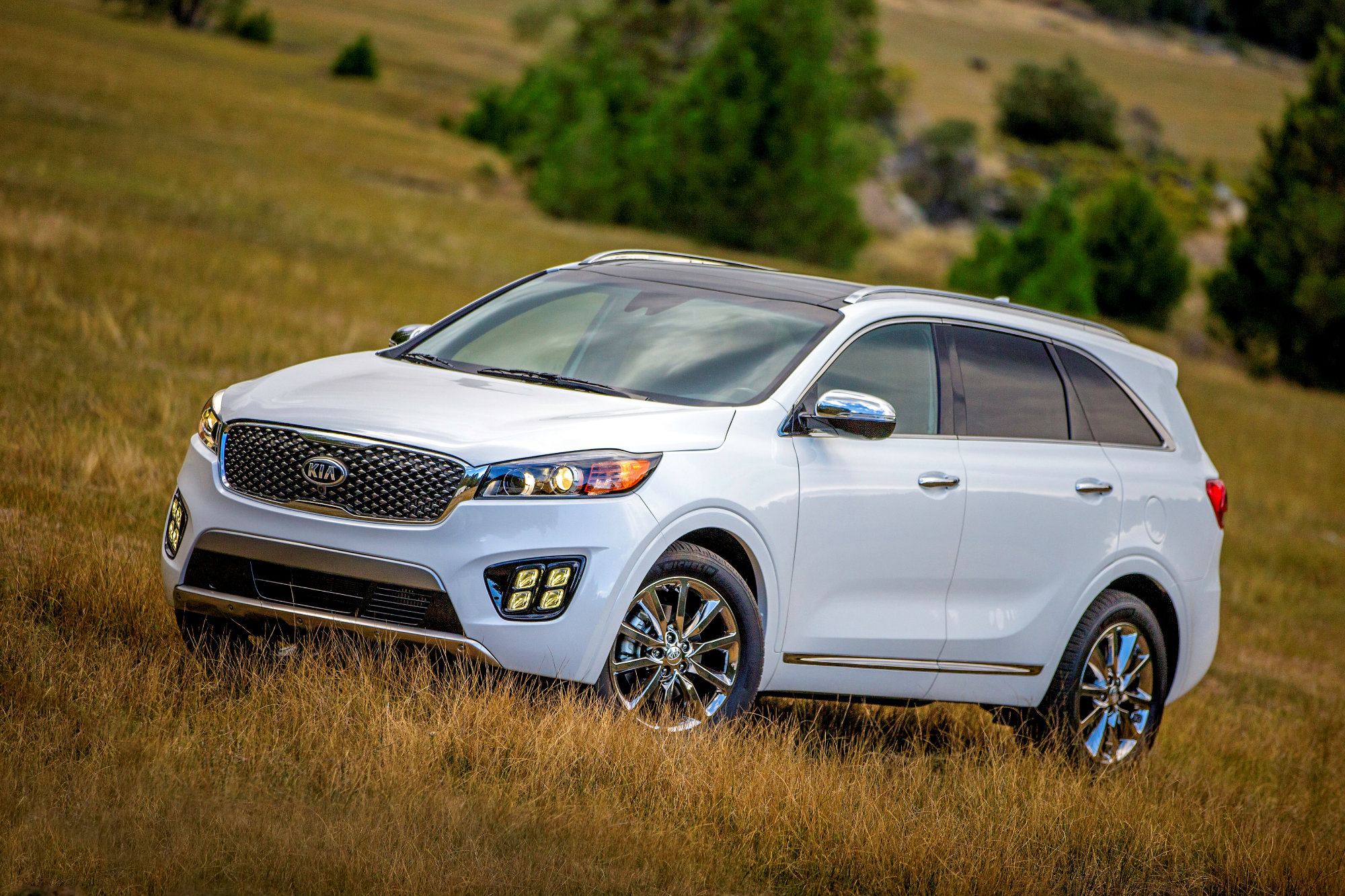 lx ratings drive awd wheel photo sportage front price photos new safety reviews kia suv