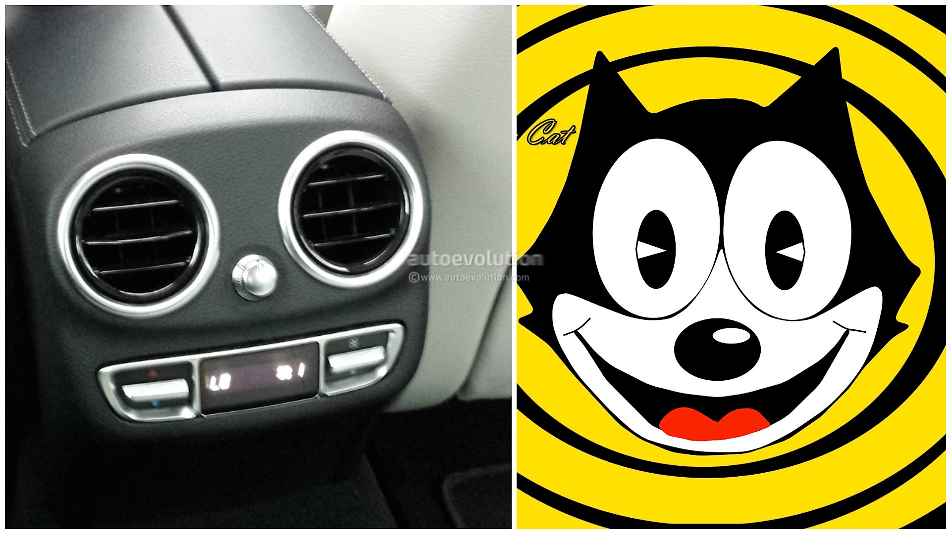 What Cartoon Characters Have In Mon With Car Interior
