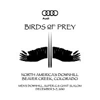 Audi Birds of Prey begins on December 3
