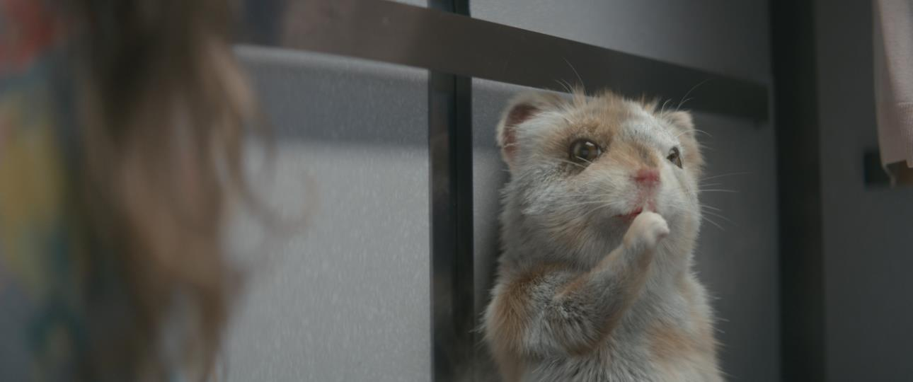 Baby Hamster Escapes From Hospital In Kia Soul Turbo Commercial