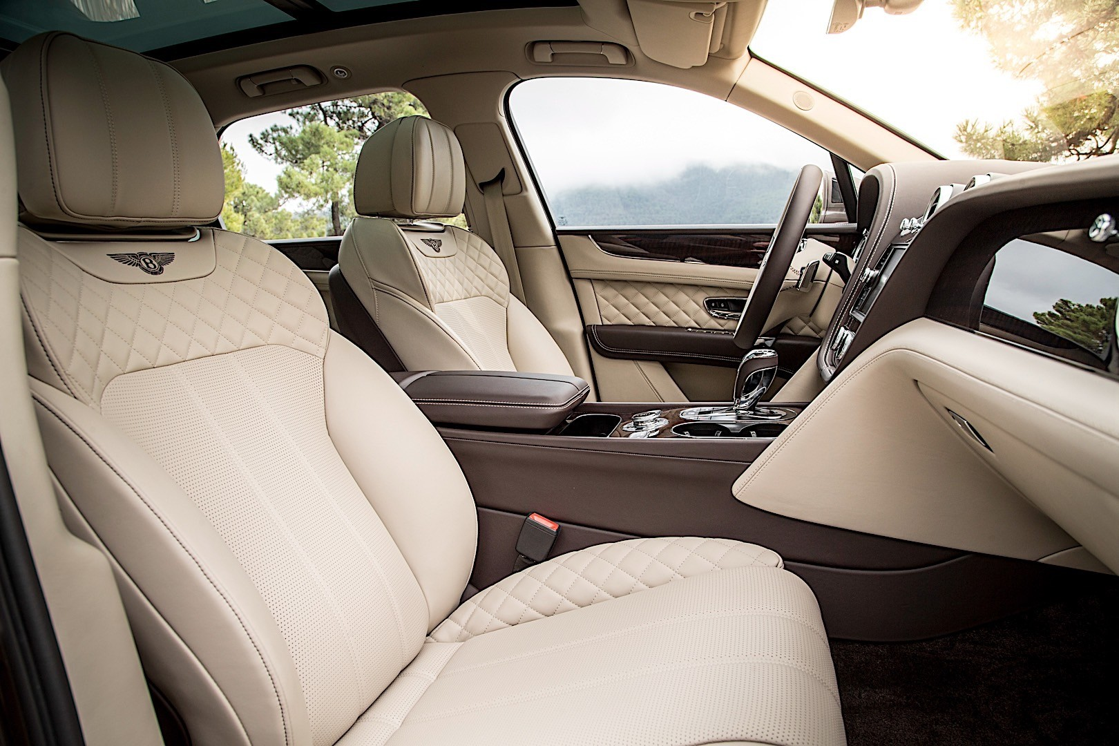 Luxury Cars Without Leather