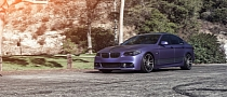 BMW 5-Series Matte Metallic Purple on Concavo Wheels [Photo Gallery]