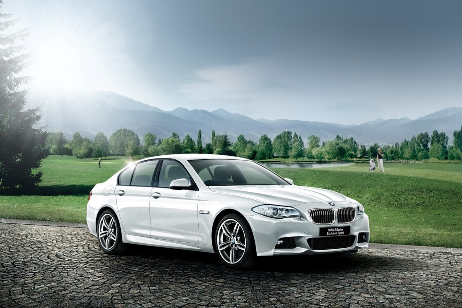 Bmw Launches Limited Edition 5 Series In Japan Autoevolution