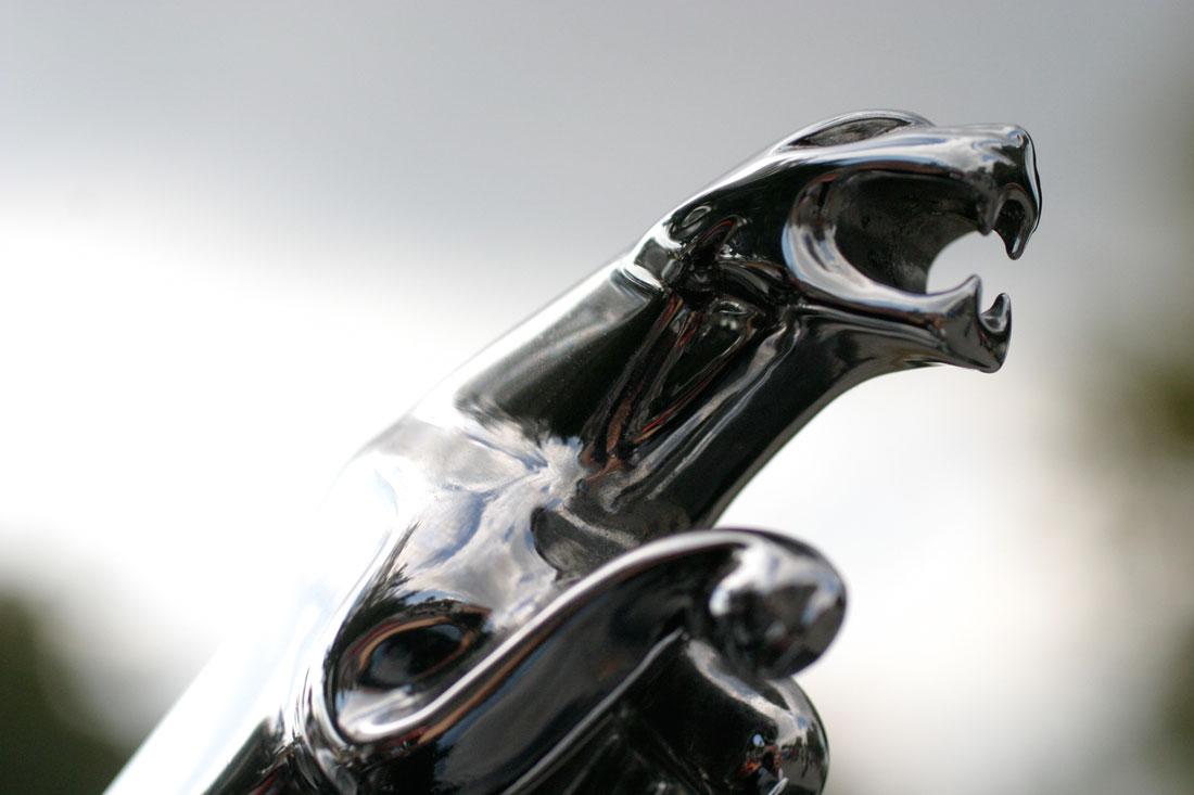 Car logos history and origins autoevolution jaguar badge biocorpaavc