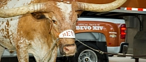 Chevrolet Silverado Becomes Texas Longhorns' Official Truck