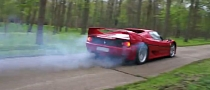 Ferrari F50 Burnout is Sweet [Video]