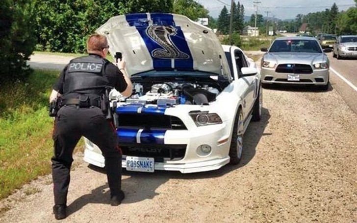 Ford mustang shelby gt 500 pulled over police officer photographs engine bay autoevolution