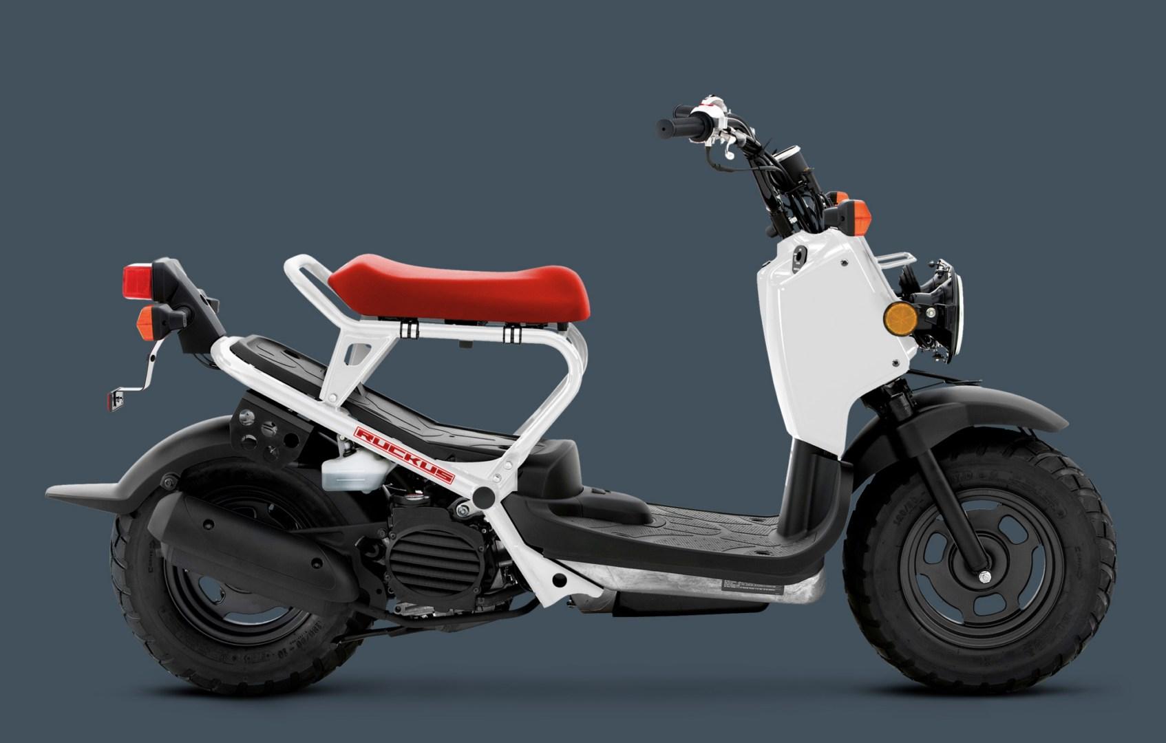 2013 Honda Ruckus When Fun Meets Function 52231