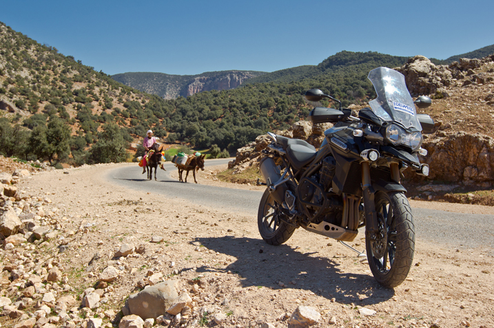 2013 triumph tiger explorer charges into the adventure
