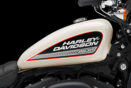 2014 Harley Davidson 883 Roadster First Pictures