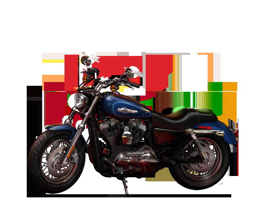 2014 Harley Davidson Sportster 1200 Custom Pictures Galore