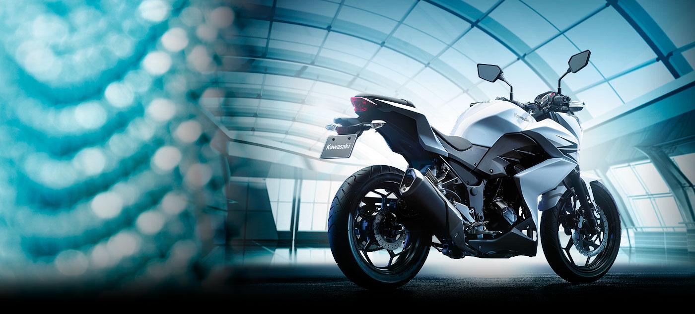 2014 Kawasaki Z250 Looks Mean But It S No R25 Autoevolution