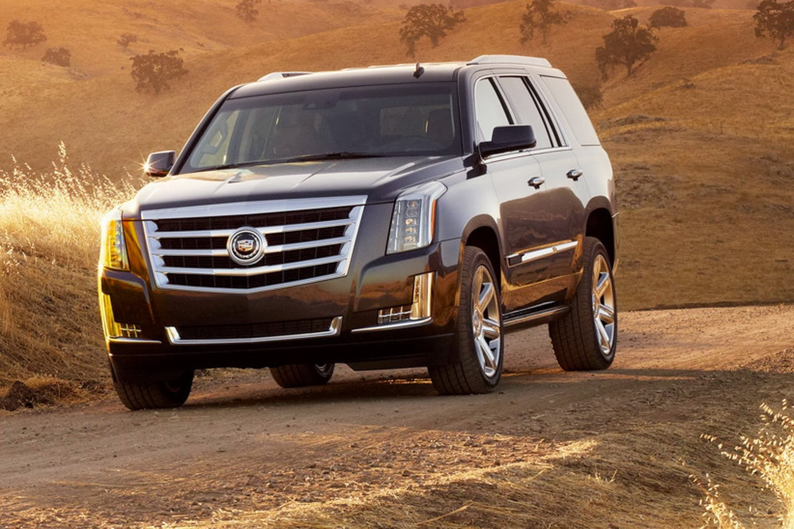 Used 2015 Cadillac Escalade >> 2015 Cadillac Escalade Officially Revealed - autoevolution