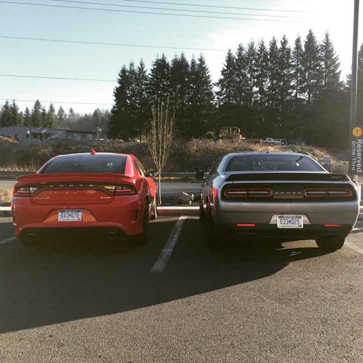 Charger Vs Challenger >> 2015 Dodge Challenger SRT Hellcat and 2015 Dodge Charger ...