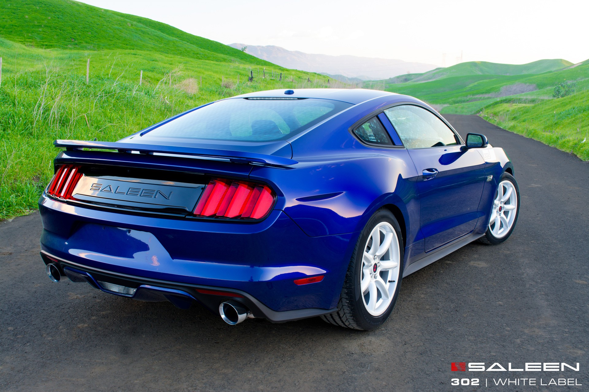 2015 saleen mustang 302 white label