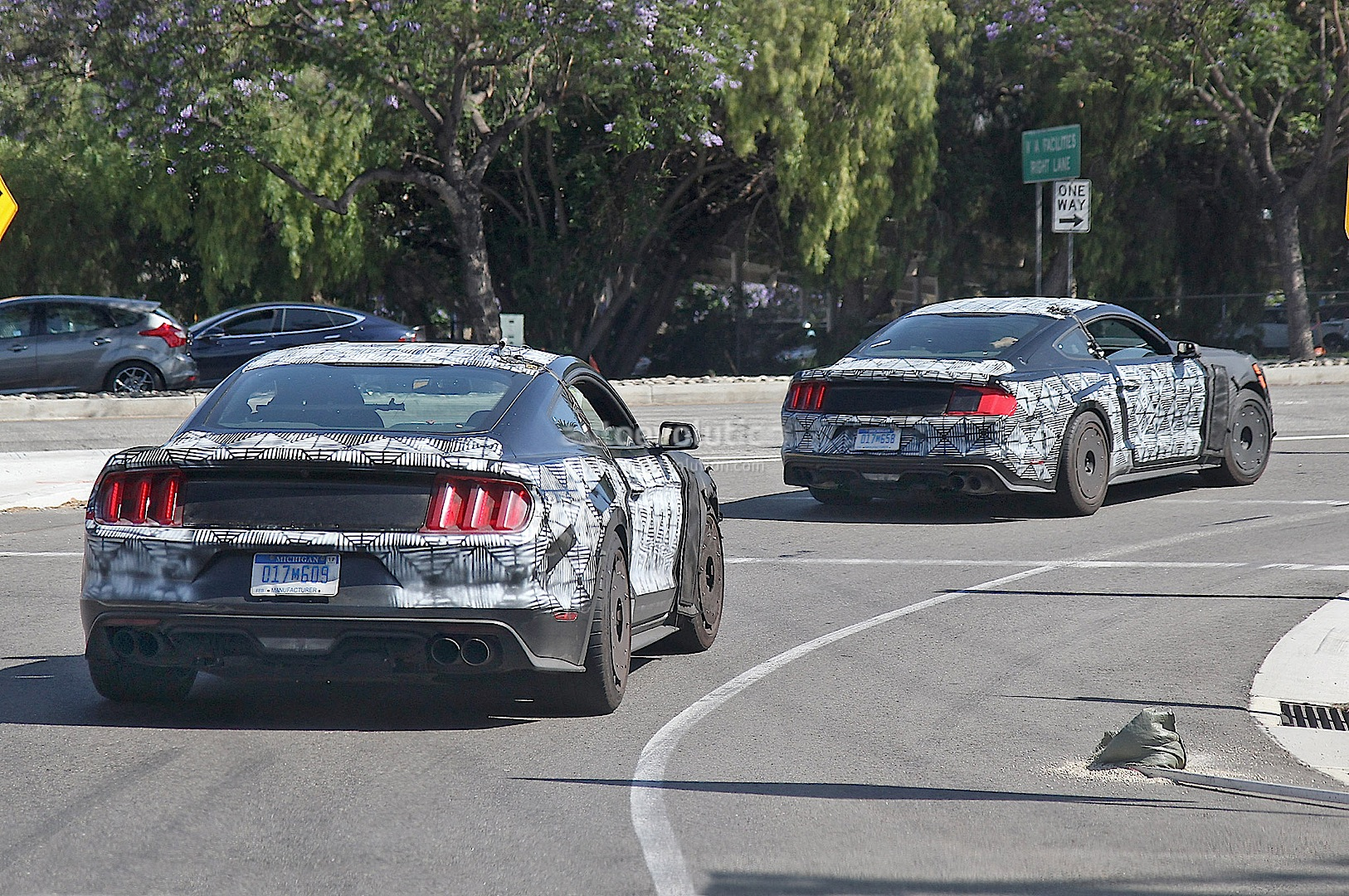 Ford Gt350 Vs Gt500
