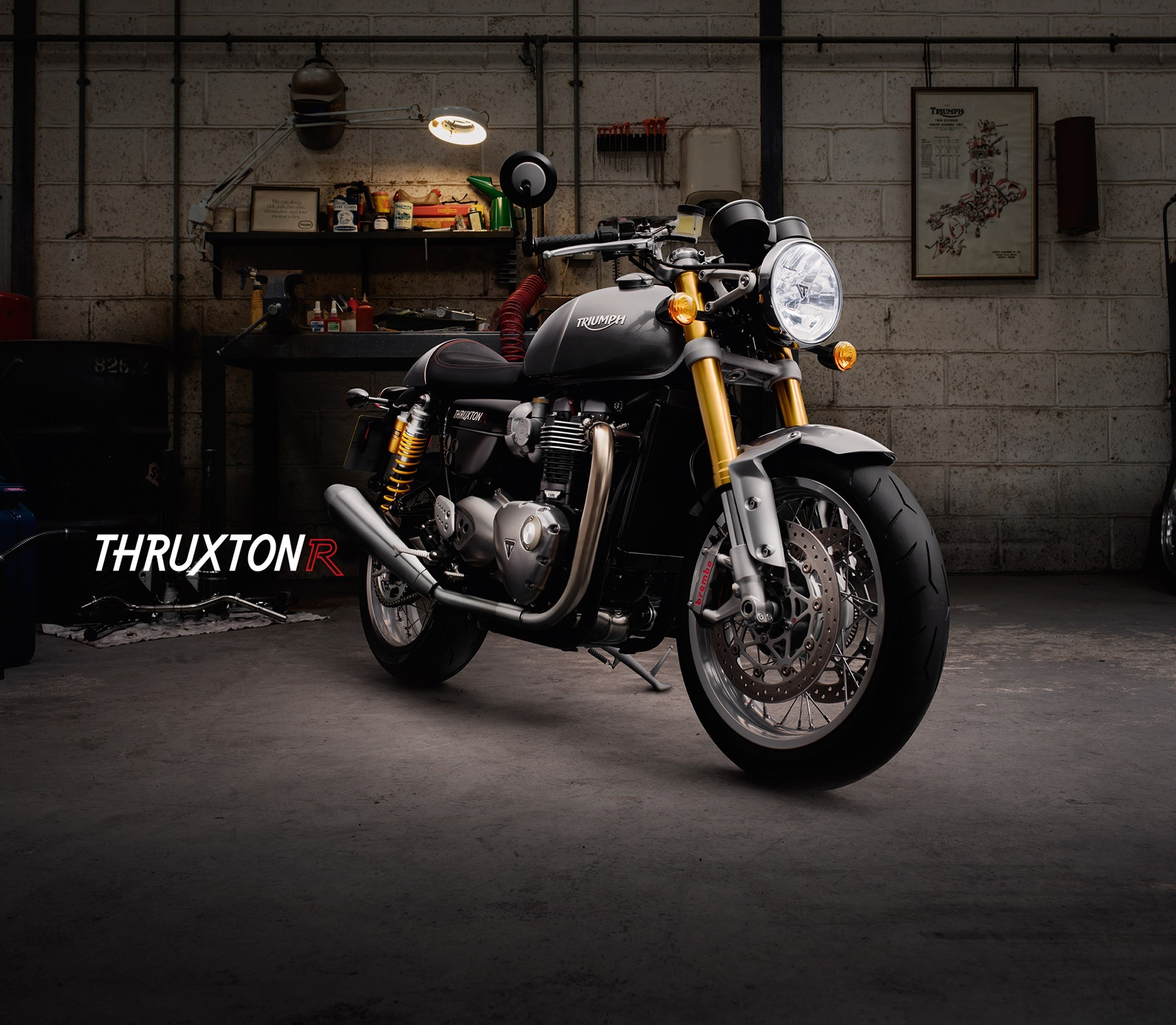 2016 triumph thruxton and thruxton r shown looking like real neo retro beauties gallery. Black Bedroom Furniture Sets. Home Design Ideas