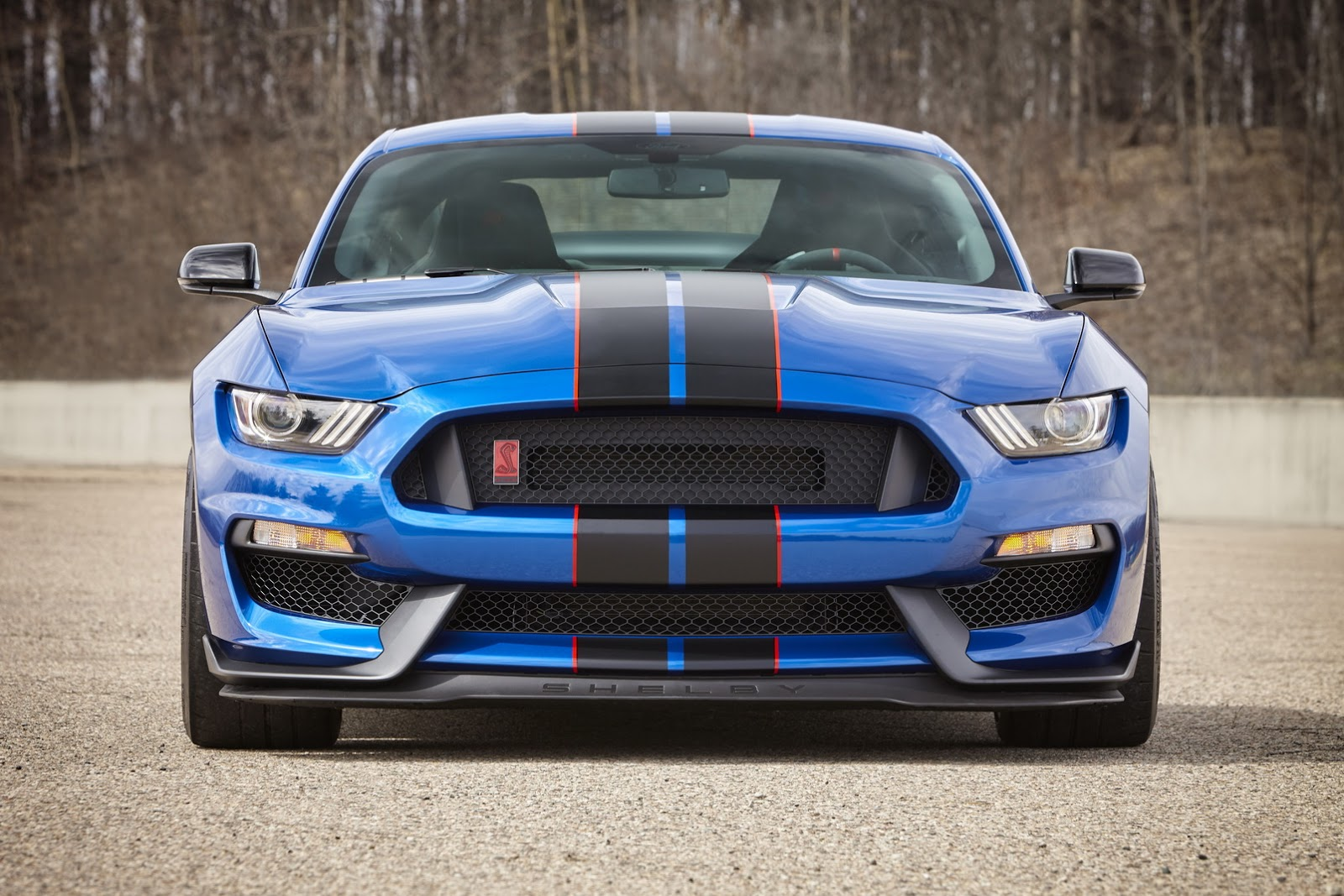 shelby gt350 mustang colors blowing mind gt ford gt350r autoevolution