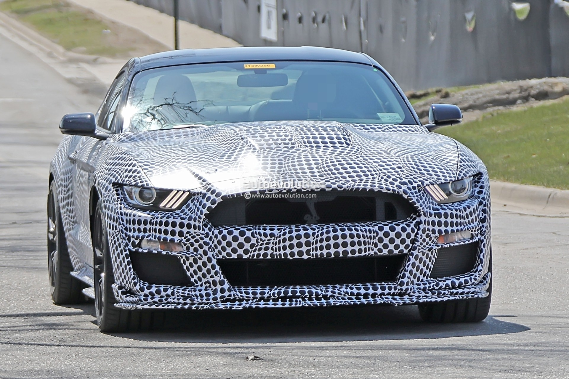 2020 shelby gt500 bird'seye teaser reveals the obvious