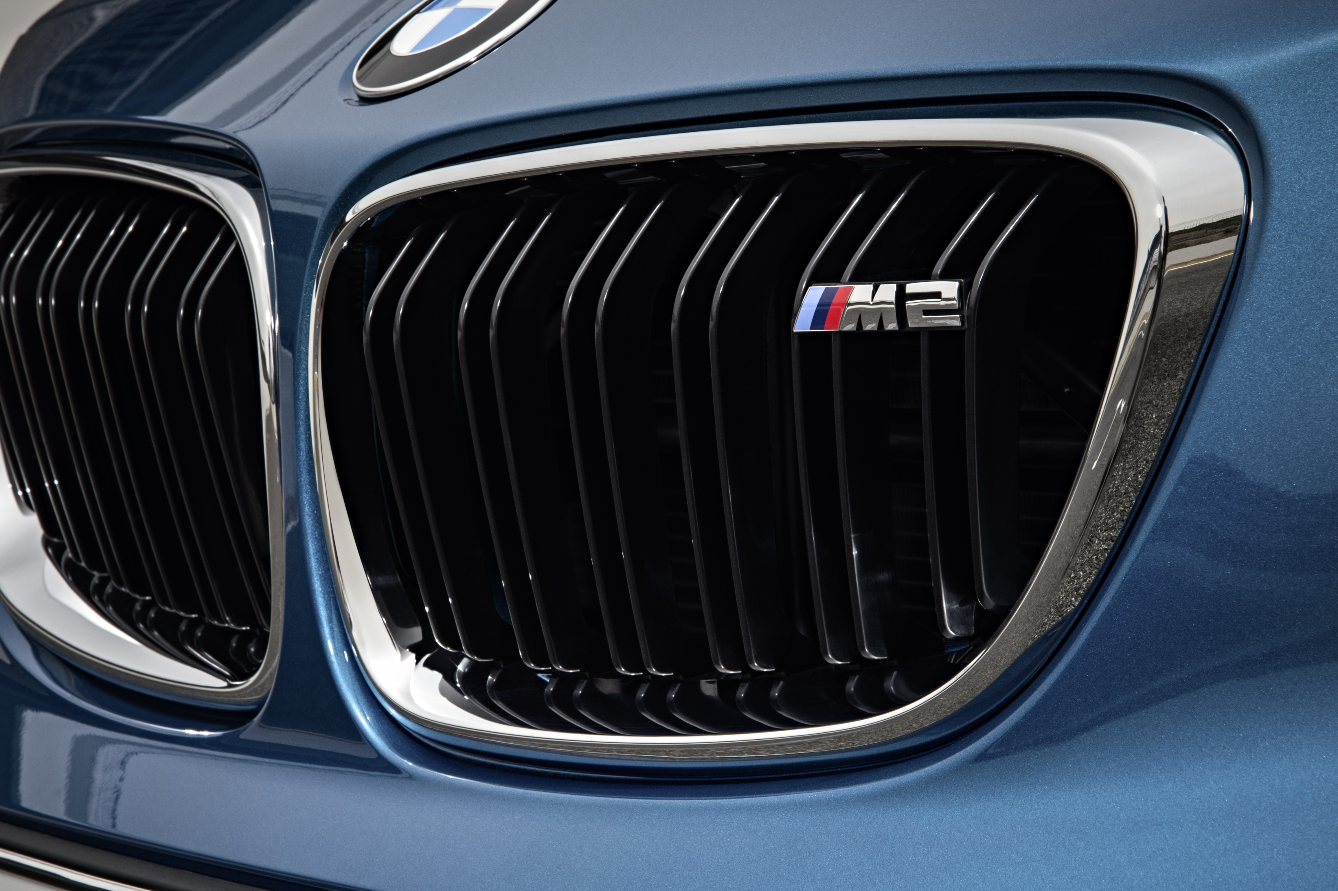 bmw grille kidney grill htm surrounds painted for