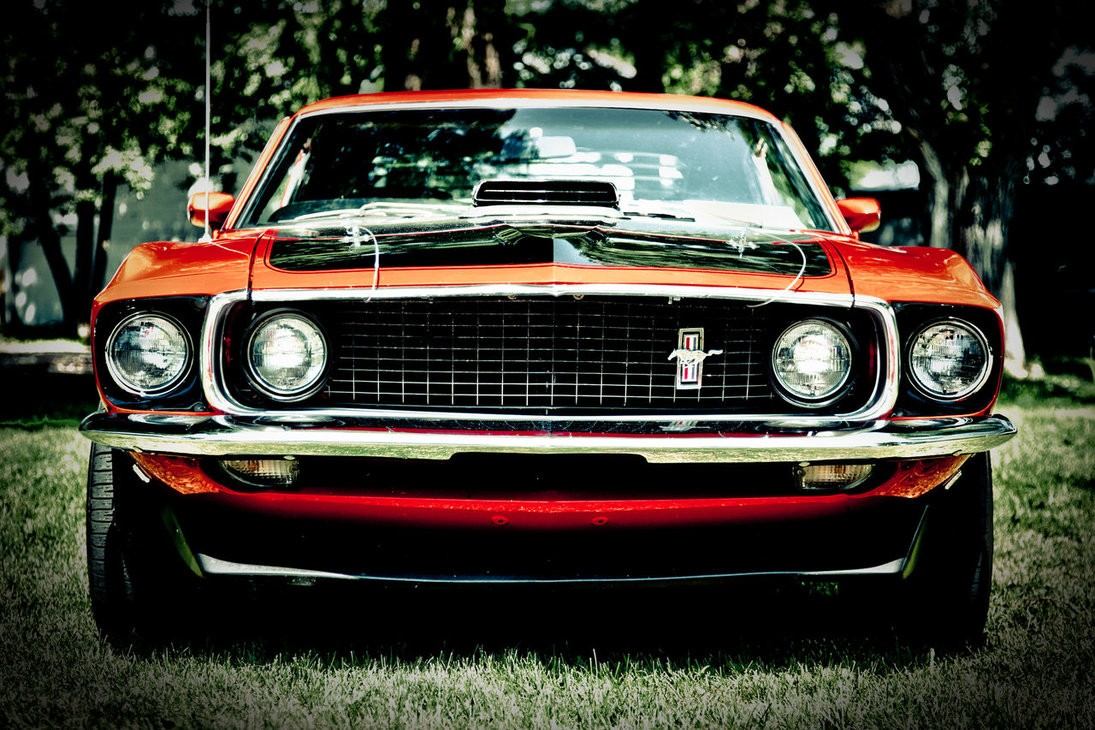 Image Result For Muscle Car Checks