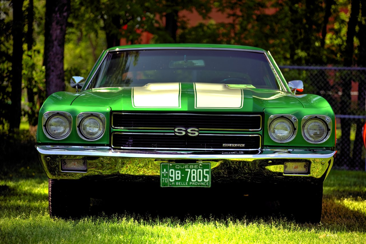 50 Shades of Muscle Cars - a Jaw-Dropping Photo Project by ...
