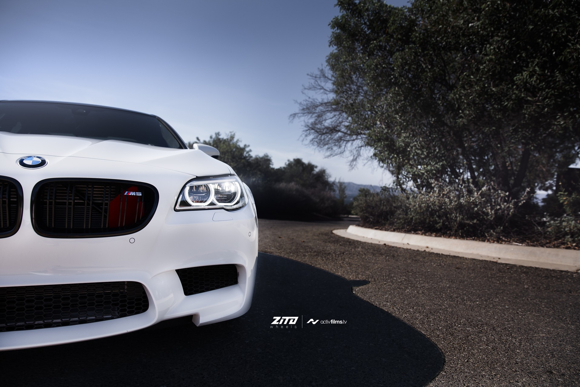 Alpine White Bmw F10 M5 On Zito Wheels Is Gorgeous Autoevolution