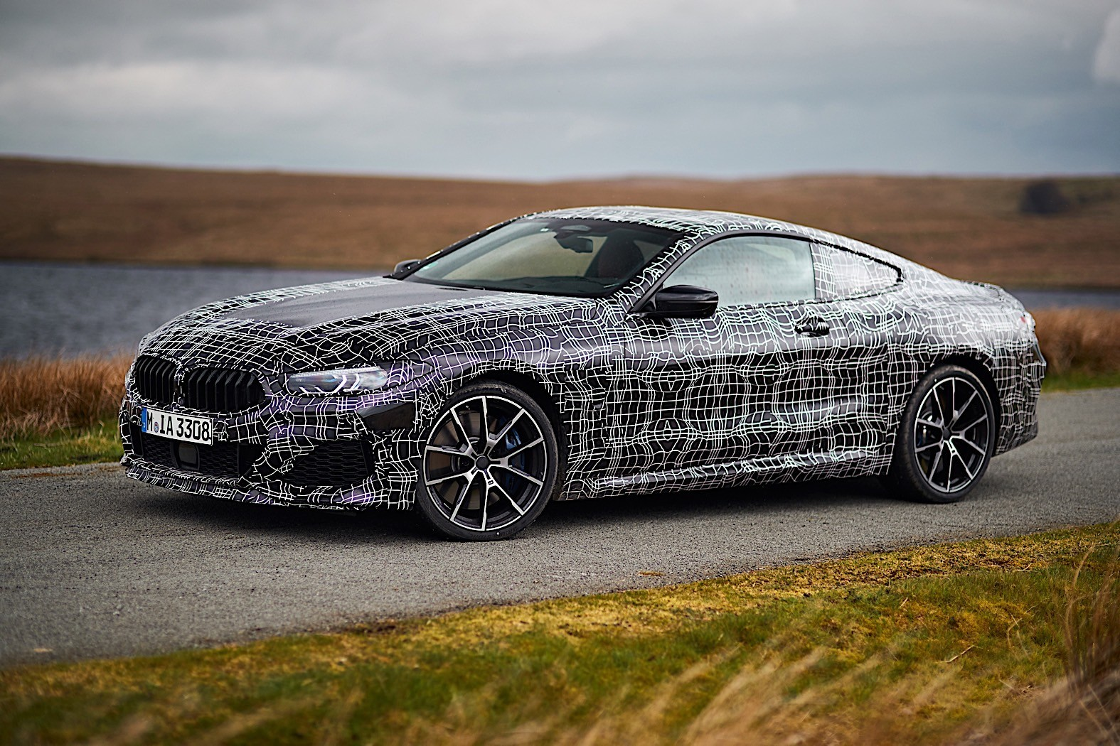 bmw 8 series coupe first official details and photos released autoevolution. Black Bedroom Furniture Sets. Home Design Ideas