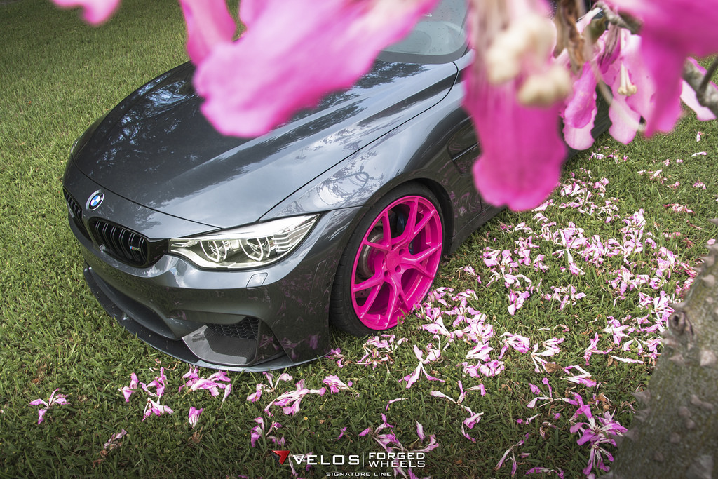 M4 Sport Online >> BMW M4 on Pink Wheels Poses for Breast Cancer Awareness - autoevolution