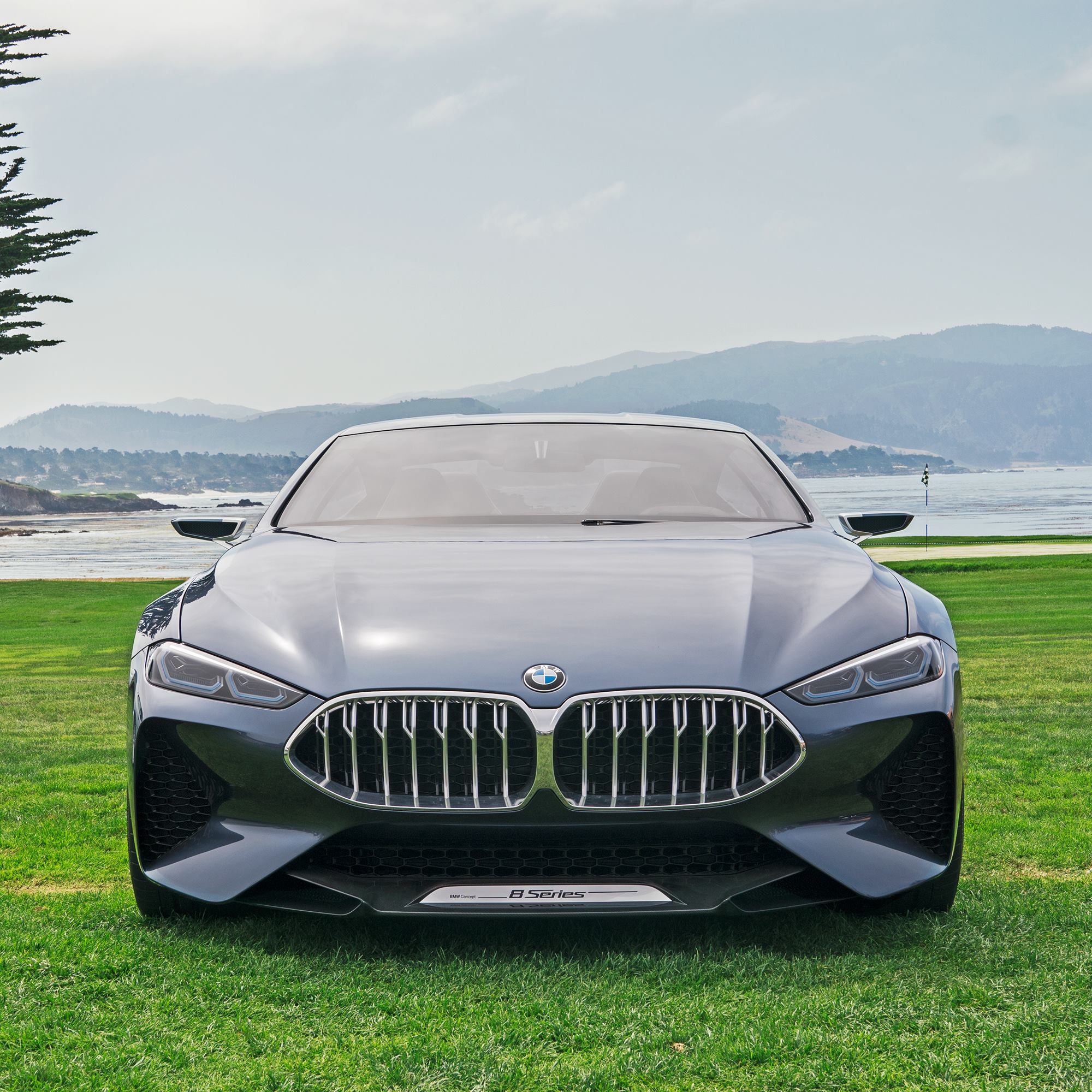 Bmw Z Series: BMW Z4 And 8 Series Concepts Share Pebble Beach Spotlight