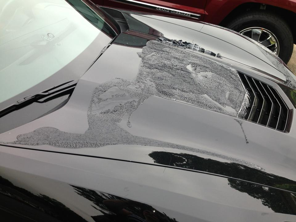Chevrolet Corvette Stingray Gets Vandalised With Paint