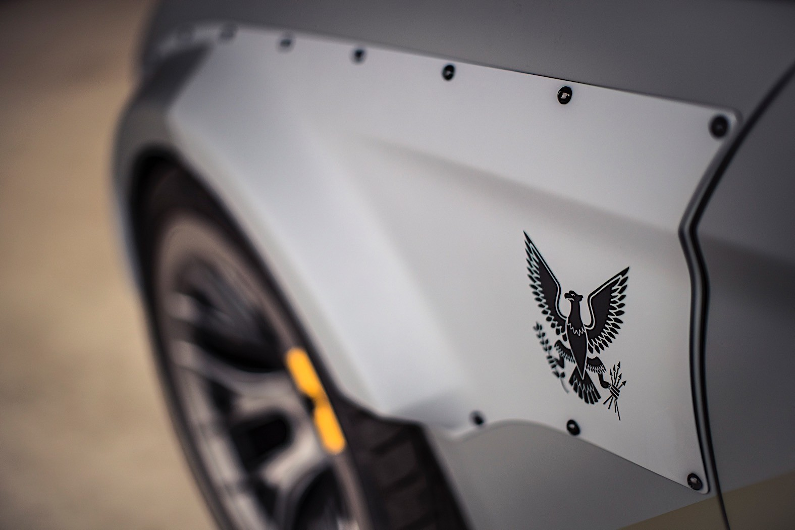 Ford Eagle Squadron Mustang Gt Stuns The Skies Over Beachy