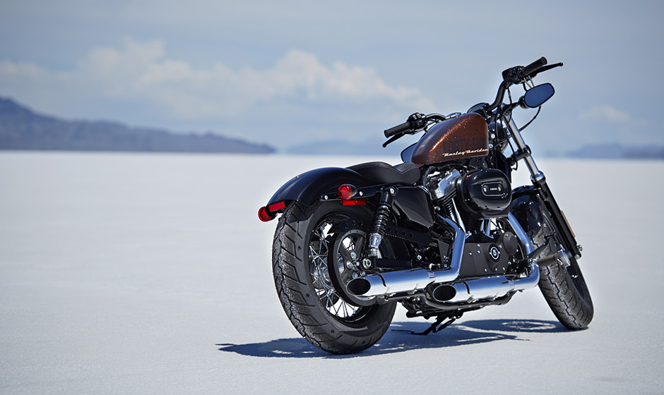 Harley-Davidson 2014 Forty-Eight in All Its Splendor - autoevolution