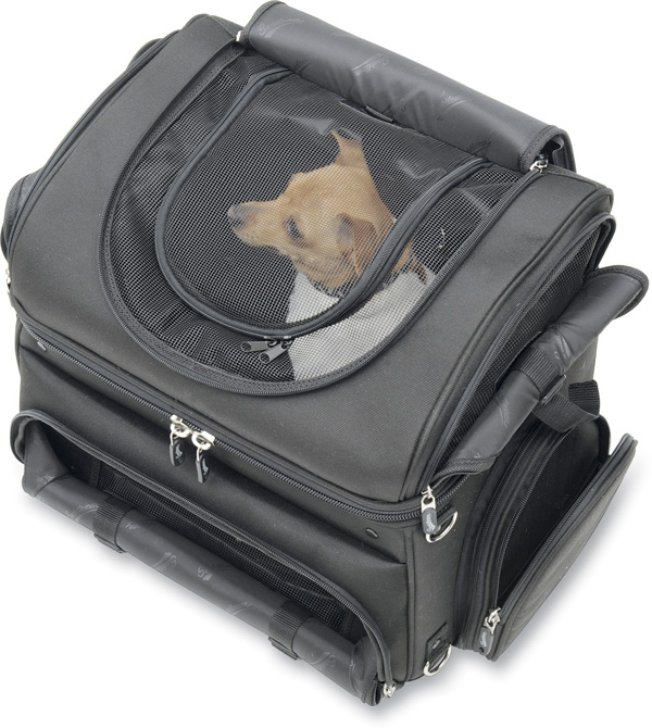 Have Your Small Pet Ride With You In The Convertible Pet Carrier Autoevolution