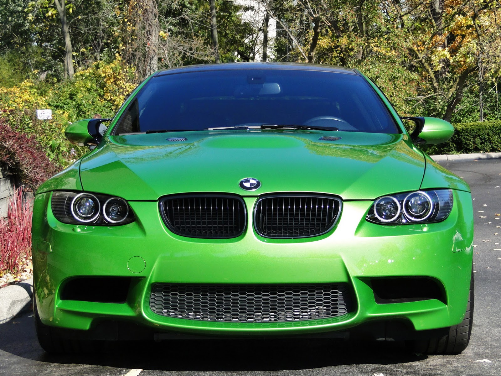 Individual Java Green Bmw E M Up For Sale Photo Gallery on Bmw M3 E92