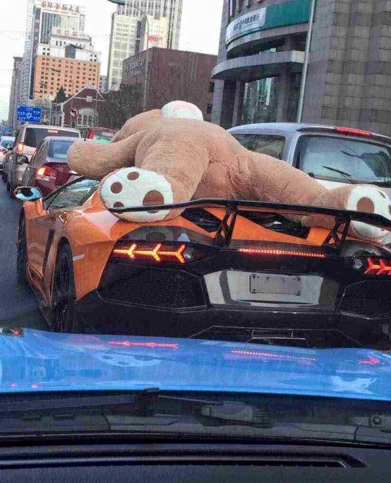 Lamborghini Aventador Wearing a Teddy Bear on Its Roof Stops
