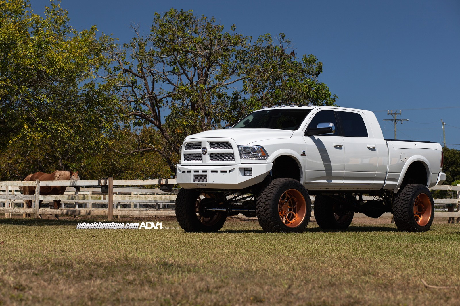 Lifted Ram 2500 On Rose Gold Wheels Meets A Horse