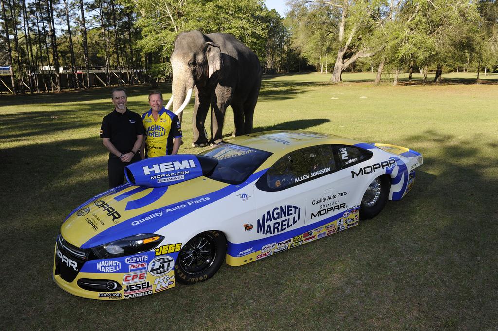 Mopar Unleashes New Dodge Dart Pro Stock Racer - autoevolution