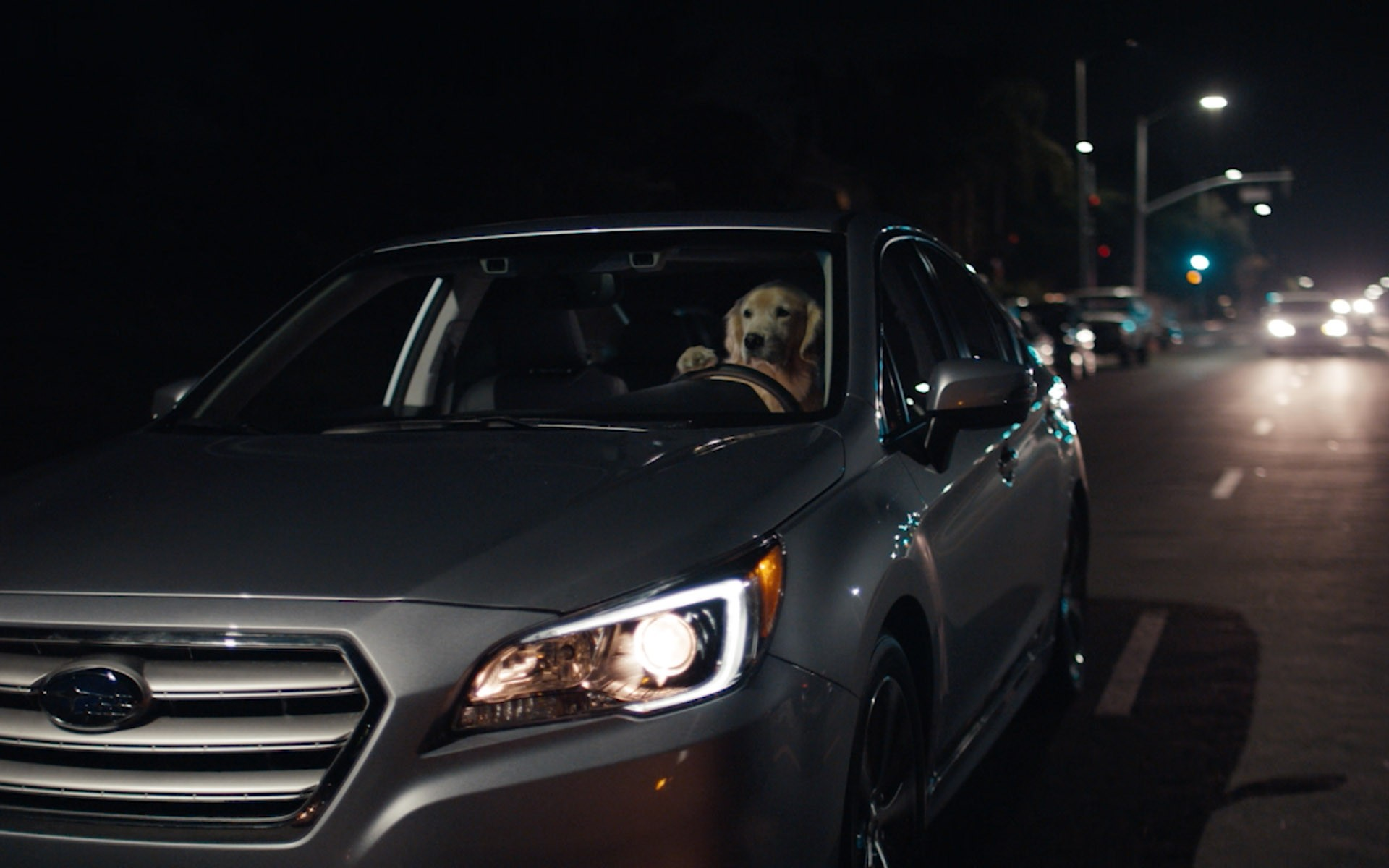 Puppy Bowl 2016: Subaru's Family of Lovable Dogs Drive Cars, Melt Hearts - autoevolution
